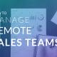 remote sales team